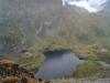 Capra tó